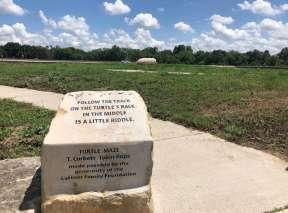 Beginning of the Turtle Maze at Sedgwick County Art Walk In Wichita, KS