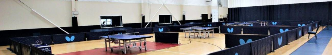 Freedom Courts Ping Pong