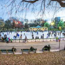 Frog Pond Ice Skating with Common Lights