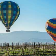 Hot Air Balloons Over The Vineyards