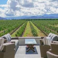 Spring Vineyards at BOTTAIA Winery
