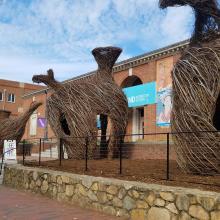 Ackland Art Museum Exterior