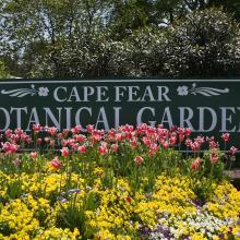 Cape Fear Botanical Garden Sign