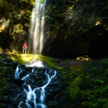 Upper Trestle Creek Falls, Cottage Grove by Eugene, Cascades & Coast
