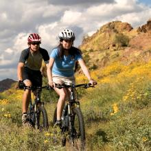 Biking among the flowering Brittlebush