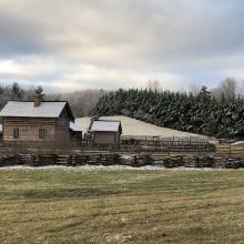 Blue Ridge Institute & Farm Museum - Winter