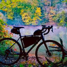 Biking & Fall Color - Philpott Lake