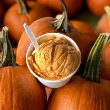 Huber Pumpkin Ice Cream