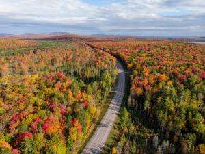 Adirondack Wayfinder 1