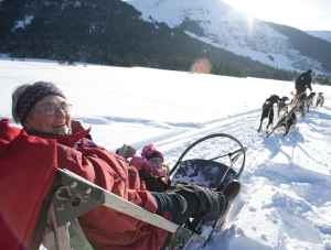 Dog sledding in Anchorage