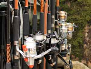 Rods and reels for Anchorage fishing