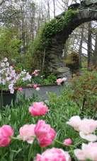 Blithewold Mansion & Arboretum