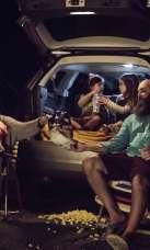 Rustic Tri Vue Drive-In