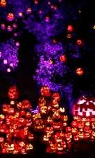 Jack-O-Lantern Spectacular -Providence