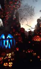 The Magic Of Halloween!
