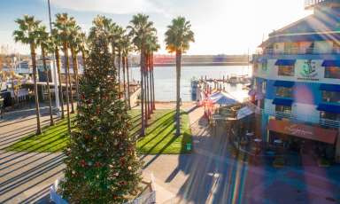 Jack London Square - Holidays