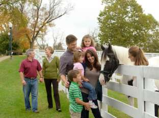 Visit the Kentucky Horse Park