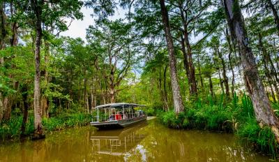 Honey Island Swamp Tour, Cajun Encounters