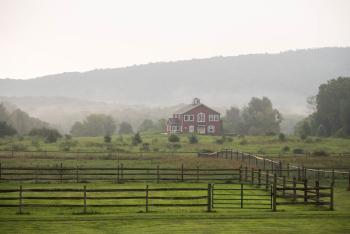 mountain-horse-farm