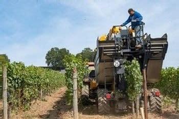 Machine harvesting at Sokol Blosser