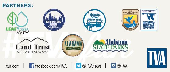 TVA blog partners