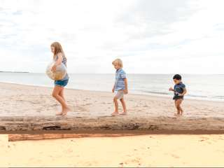 Children on driftwood