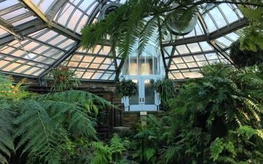 Morris Arboretum Green