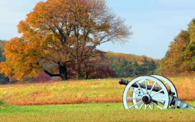 Valley Forge Park Fall Cannon