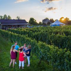 Cassel Vineyards in Hummelstown, PA
