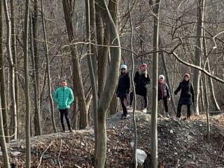 Idlewood Trail