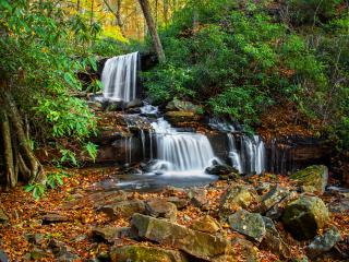 Linda Seanor, Cole Run Fall, Forbes State Forest