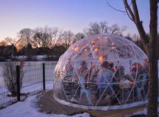 Winter Snowglobe Zoo 2