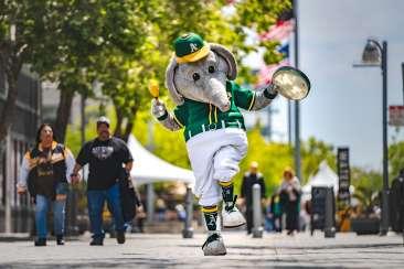 Stomper Oakland A's Mascot
