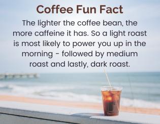 coffee fun fact