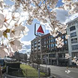 CITGO sign in Spring