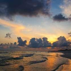 Coastal/Ocean