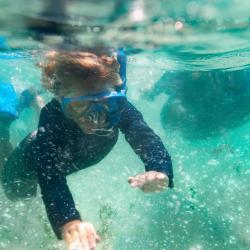 Underwater Snorkeling_DFWB