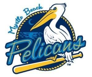 Pelicans Icon