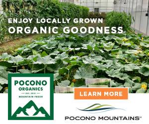 2021 Summer Co/Op ~ Digital ~ Pocono Organics