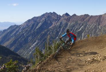 Mountain Biking on the Big Mountain Trail at Snowbird