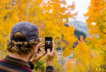 Man Taking Photo of Fall Trees in Little Cottonwood Canyon