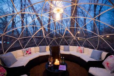 North Forest Lights Snow Globe (1)