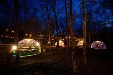 North Forest Lights Snow Globe (2)