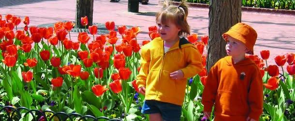 Kids enjoy the bright flowers along Pearl Street in Boulder, CO.