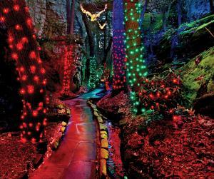 Rock City_Enchanted Garden of Lights_Enchanted Trail