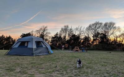 tent at Erwin Park