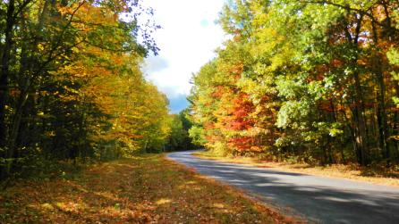 Fall Road - Photo Courtesy of the the Adirondack Coast Visitors Bureau