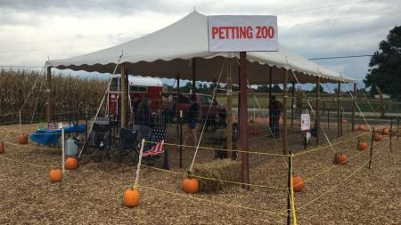 The whole family will enjoy the petting zoo at Hogan Farms