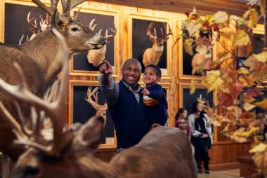 Wonders-of-Wildlife-Bucks-and-Bulls-family-380x254