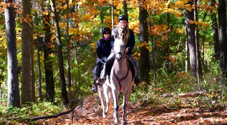 Horseback Riding in Evansburg State PArk